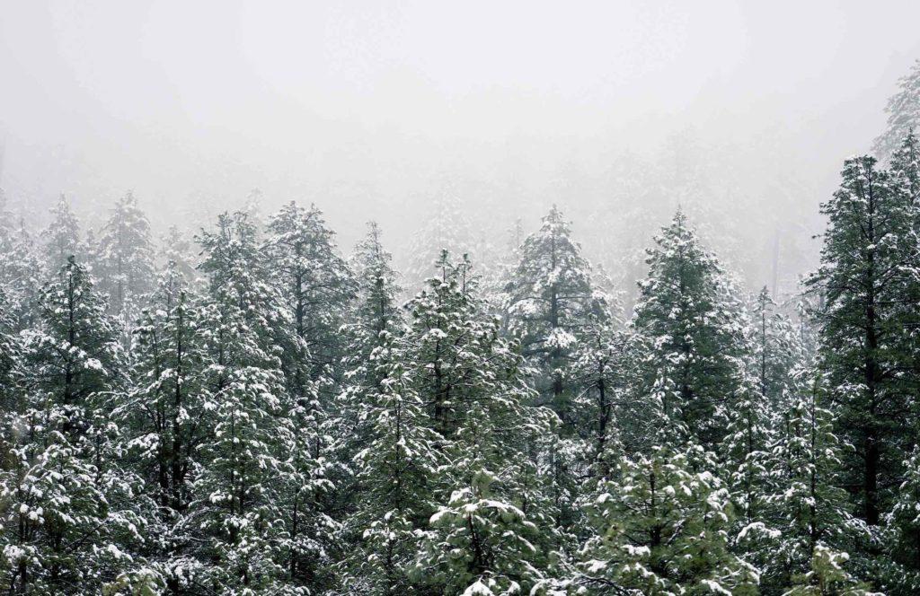 vinterdepression - giv tid til fordybelse